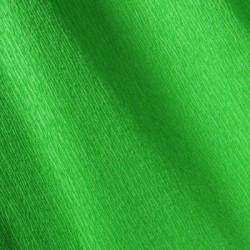 Canson Vert franc 21 200002416